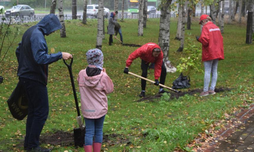 Архангелогороды приняли участие в акции «Сохраним лес»